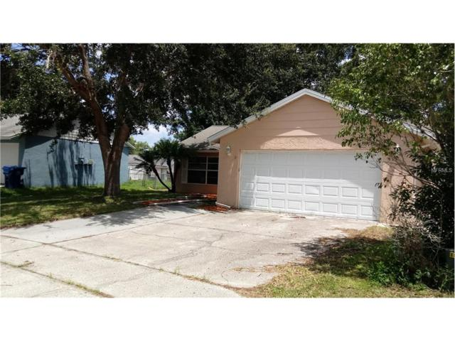 7954 Adelaide Loop, New Port Richey, FL 34655 (MLS #E2205074) :: Griffin Group