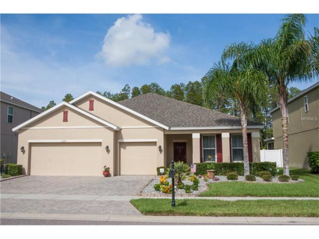 22417 Cherokee Rose Place, Land O Lakes, FL 34639 (MLS #E2205184) :: Cartwright Realty