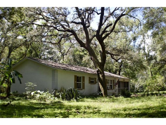 16122 Hodza Street, Brooksville, FL 34604 (MLS #E2205200) :: Griffin Group