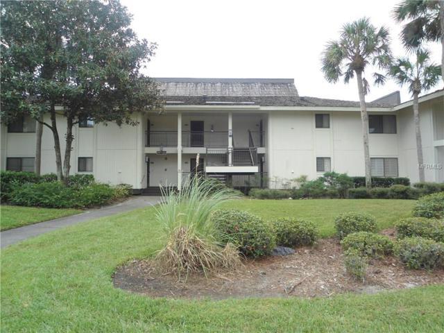 29300 Bay Hollow Drive #3248, Wesley Chapel, FL 33543 (MLS #E2205281) :: The Duncan Duo Team
