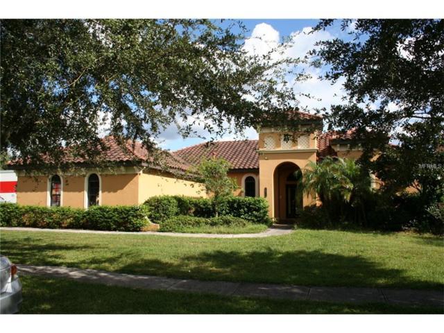20113 Fair Hill Way, Tampa, FL 33647 (MLS #E2205362) :: Team Bohannon Keller Williams, Tampa Properties