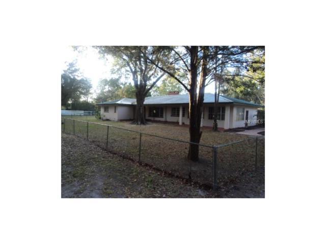26707 Glenhaven Road, Wesley Chapel, FL 33544 (MLS #E2205477) :: Cartwright Realty