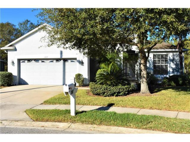 1037 Appian Place, Wesley Chapel, FL 33543 (MLS #E2205542) :: The Fowkes Group