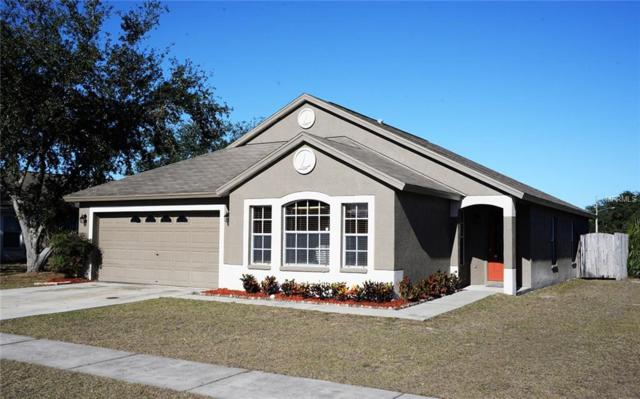 24509 Mistwood Court, Lutz, FL 33559 (MLS #E2205670) :: Delgado Home Team at Keller Williams