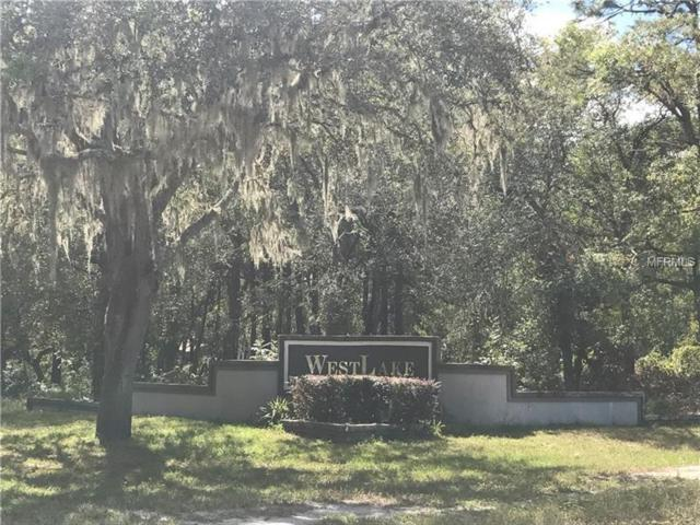 5074 Westlake Boulevard, Dade City, FL 33523 (MLS #E2205703) :: The Duncan Duo Team