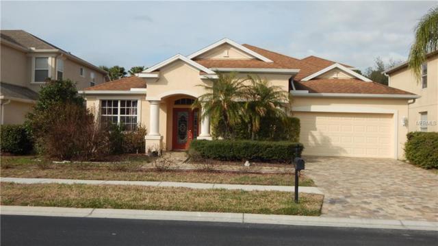 Wesley Chapel, FL 33544 :: The Lockhart Team