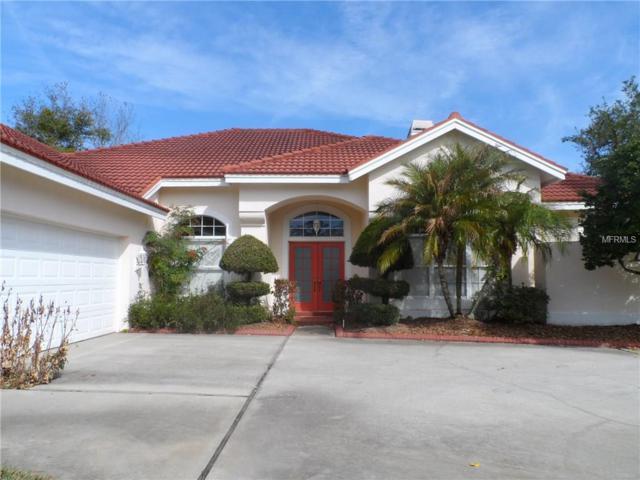 30303 Laurelwood Lane, Wesley Chapel, FL 33543 (MLS #E2205785) :: The Duncan Duo Team