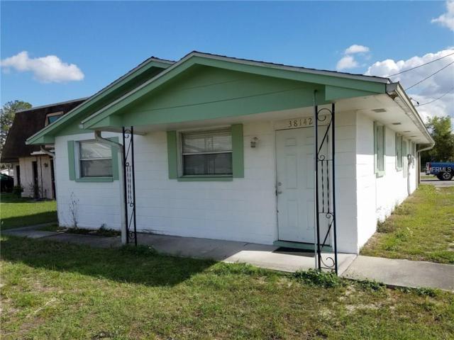 38142 North Avenue, Zephyrhills, FL 33542 (MLS #E2205878) :: Premium Properties Real Estate Services