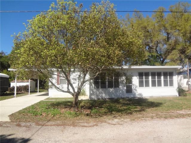 36631 Spencer Drive, Zephyrhills, FL 33541 (MLS #E2205933) :: Griffin Group