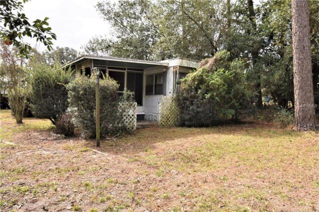 4313 Seaberg Road, Zephyrhills, FL 33541 (MLS #E2206009) :: Godwin Realty Group