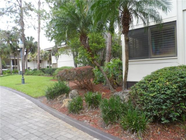 4758 Fox Hunt Dr A406, Wesley Chapel, FL 33543 (MLS #E2206101) :: Team Bohannon Keller Williams, Tampa Properties