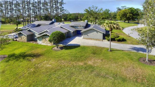 29820 Baywood Lane, Wesley Chapel, FL 33543 (MLS #E2400021) :: Team Bohannon Keller Williams, Tampa Properties