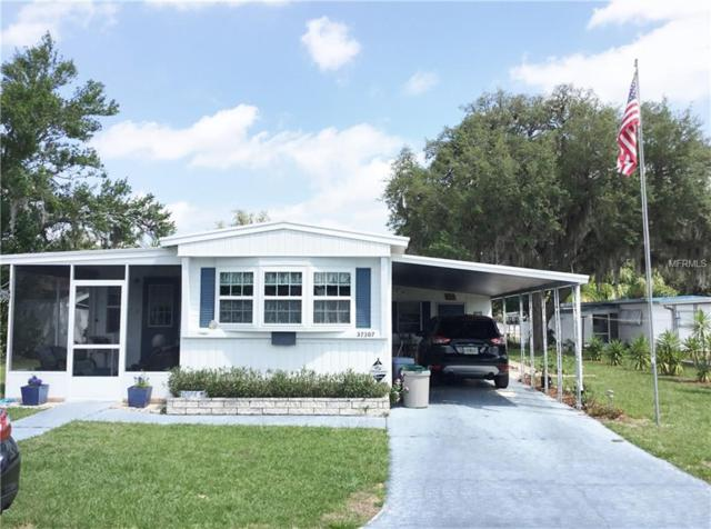 37307 Hammond Drive, Zephyrhills, FL 33541 (MLS #E2400048) :: The Duncan Duo Team