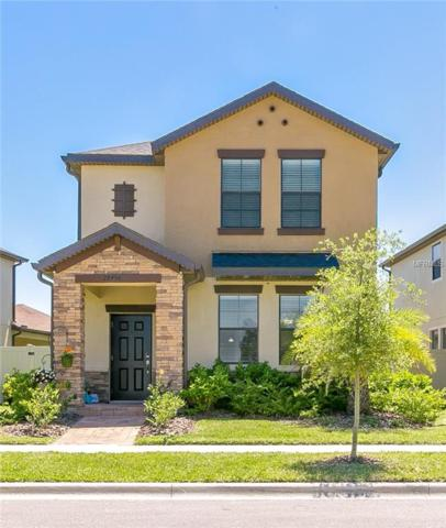 28456 Pleasant Bay Loop, Wesley Chapel, FL 33543 (MLS #E2400060) :: Griffin Group