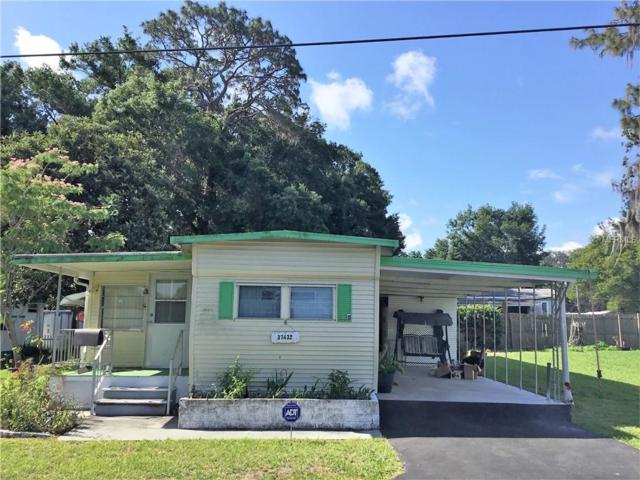37432 Hammond Drive, Zephyrhills, FL 33541 (MLS #E2400076) :: Mark and Joni Coulter | Better Homes and Gardens
