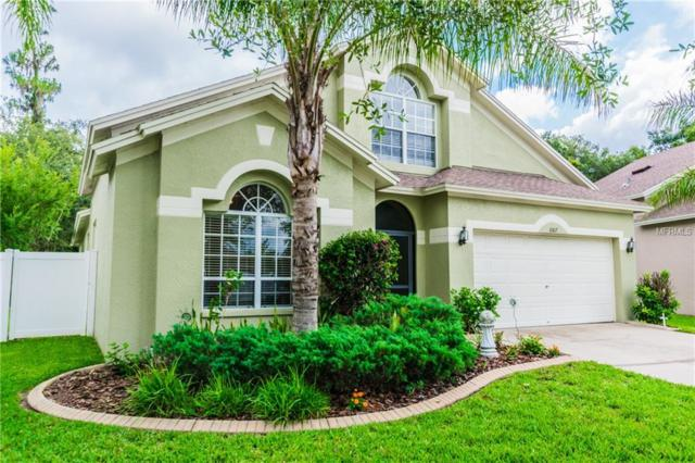 6817 Bluff Meadow Court, Wesley Chapel, FL 33545 (MLS #E2400096) :: The Duncan Duo Team