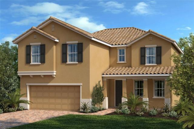 2054 Mesic Hammock Way, Venice, FL 34292 (MLS #E2400158) :: Medway Realty