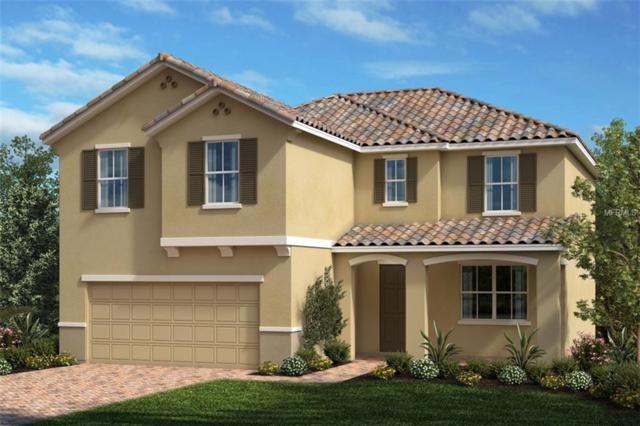 2057 Mesic Hammock Way, Venice, FL 34292 (MLS #E2400160) :: Medway Realty