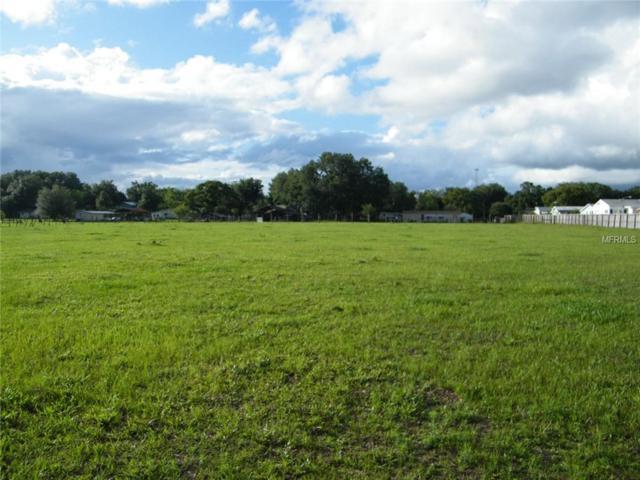 Lot 40 Lanier Road, Zephyrhills, FL 33541 (MLS #E2400202) :: The Price Group