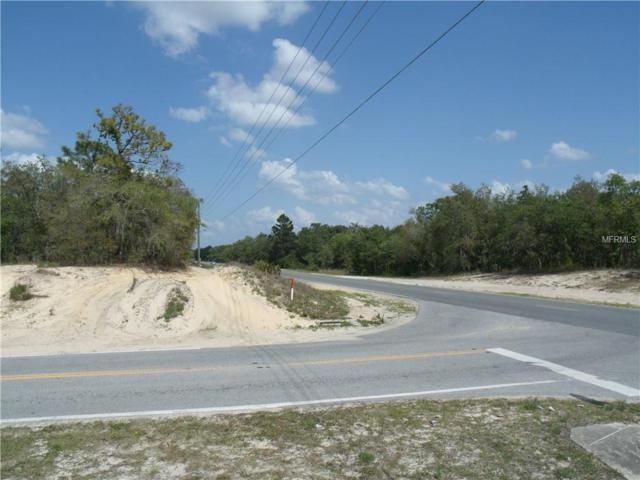Ne Corner Centralia Rd & Lelani Drive, Weeki Wachee, FL 34614 (MLS #E2400265) :: The Price Group