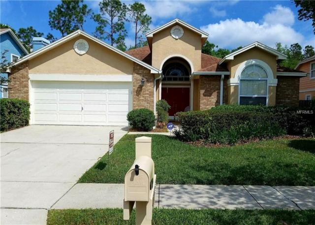 9085 Quail Creek Drive, Tampa, FL 33647 (MLS #E2400271) :: The Lockhart Team