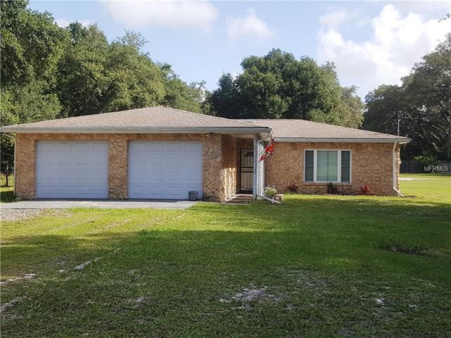 35637 Wiley Road, Zephyrhills, FL 33541 (MLS #E2400294) :: Griffin Group