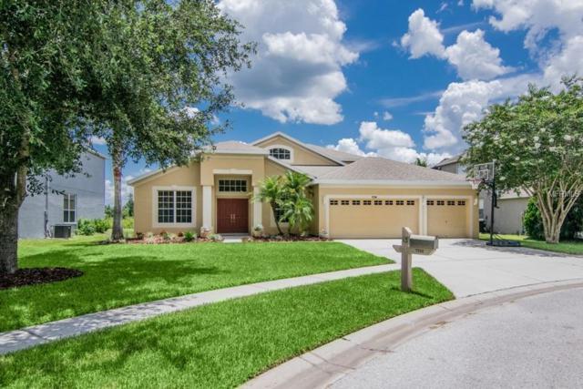 7234 Americus Lane, Land O Lakes, FL 34637 (MLS #E2400295) :: Griffin Group