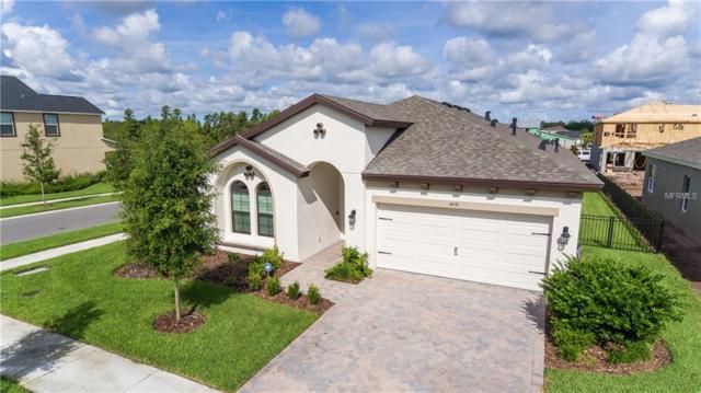 4091 Jensen Lane, Land O Lakes, FL 34638 (MLS #E2400421) :: Cartwright Realty