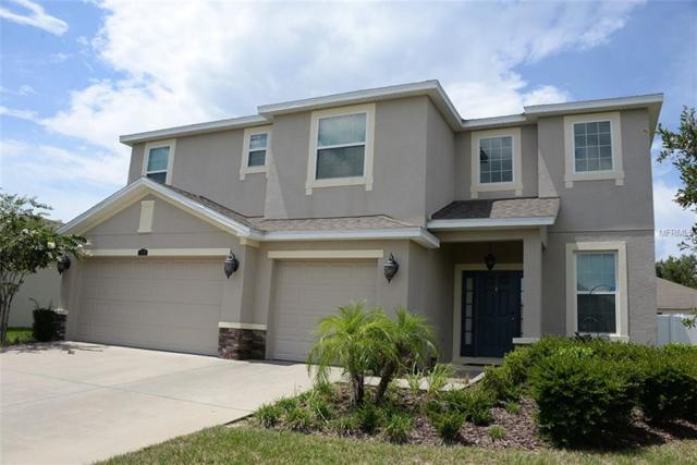 3799 Windance Avenue, Spring Hill, FL 34609 (MLS #E2400432) :: Dalton Wade Real Estate Group