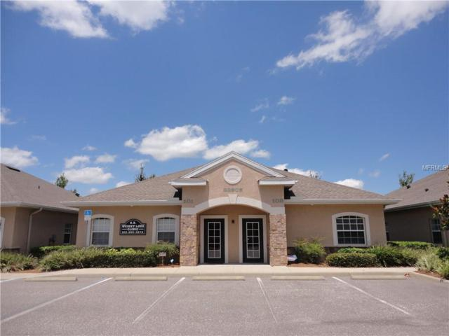 33905 State Road 54, Wesley Chapel, FL 33543 (MLS #E2400456) :: The Duncan Duo Team
