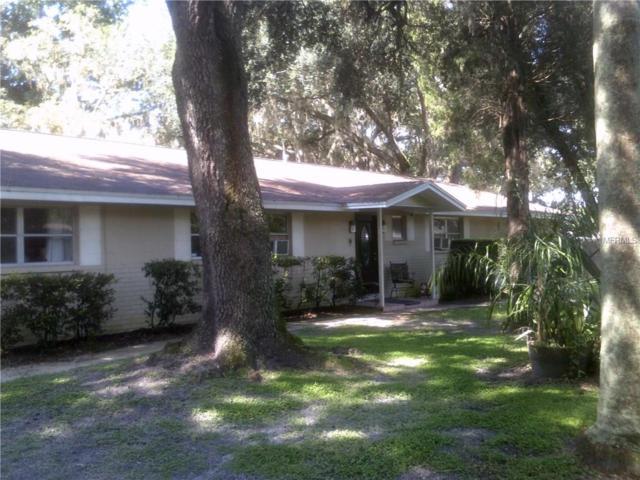 37626 Hardwood Avenue, Zephyrhills, FL 33541 (MLS #E2400473) :: Godwin Realty Group