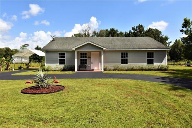 30551 Saint Joe Road, Dade City, FL 33525 (MLS #E2400506) :: Premium Properties Real Estate Services