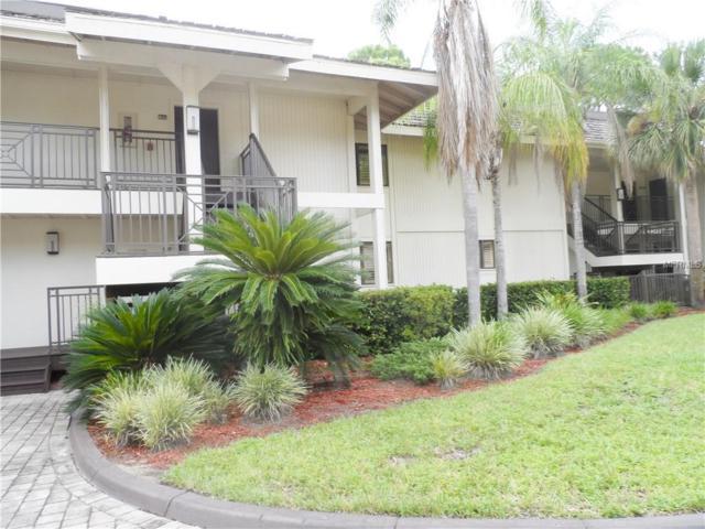 4752 Fox Hunt Drive #824, Wesley Chapel, FL 33543 (MLS #E2400513) :: RE/MAX Realtec Group