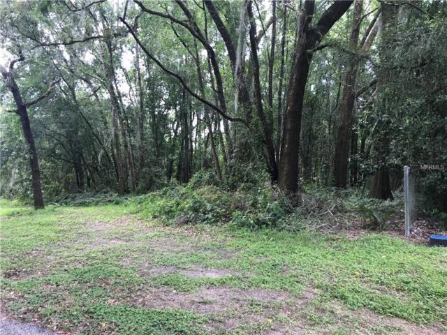 12526 Abbey Drive, Dade City, FL 33525 (MLS #E2400528) :: Lock & Key Realty