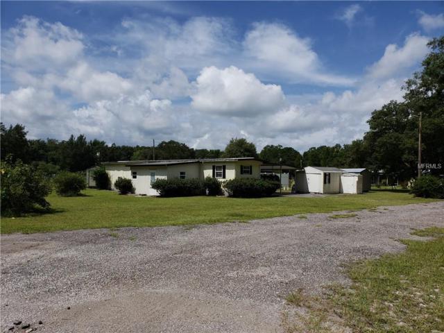 3249 Anata Drive, Zephyrhills, FL 33541 (MLS #E2400533) :: Godwin Realty Group