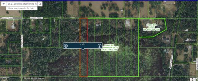 0 Darby Trail, Dade City, FL 33525 (MLS #E2400626) :: Team Pepka