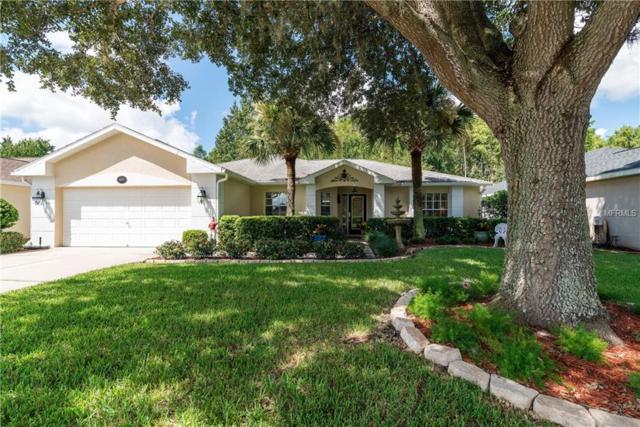 10815 Duck Hook Court, San Antonio, FL 33576 (MLS #E2400672) :: Delgado Home Team at Keller Williams