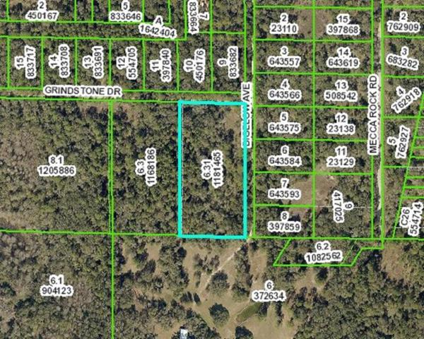 0 Grindstone, Webster, FL 33597 (MLS #E2400684) :: Beach Island Group