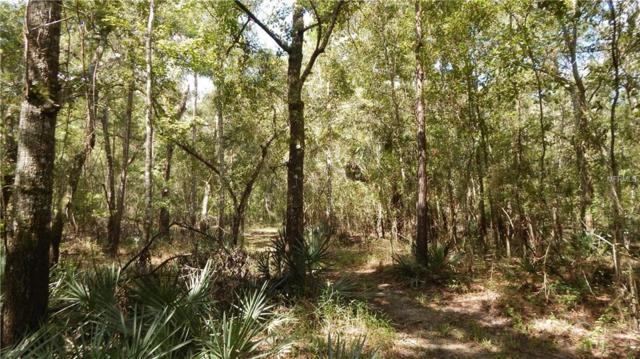 0 Culbreath Road, Brooksville, FL 34602 (MLS #E2400706) :: KELLER WILLIAMS CLASSIC VI