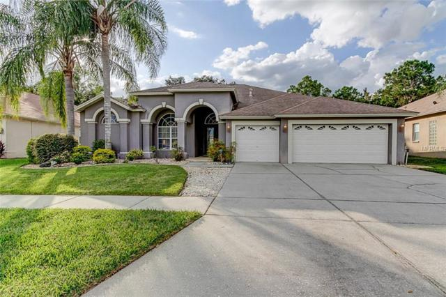18420 Eastwyck Drive, Tampa, FL 33647 (MLS #E2400712) :: Mark and Joni Coulter | Better Homes and Gardens