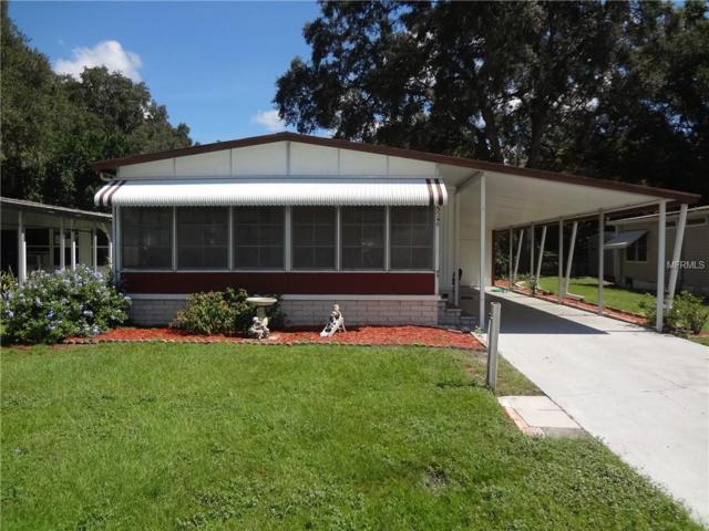3548 Castle Drive, Zephyrhills, FL 33540 (MLS #E2400732) :: Mark and Joni Coulter | Better Homes and Gardens