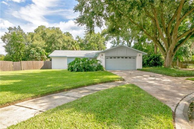 903 Tranquiview Lane, Valrico, FL 33594 (MLS #E2400799) :: Dalton Wade Real Estate Group