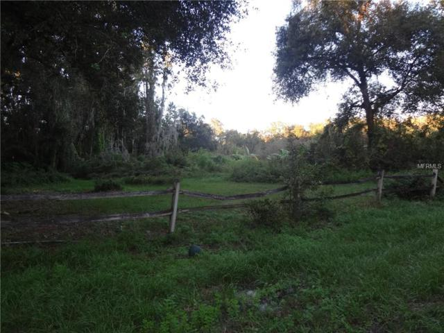 39615 Covey Avenue, Zephyrhills, FL 33540 (MLS #E2400819) :: GO Realty