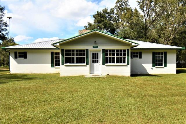 38557 Higginson Road, Zephyrhills, FL 33540 (MLS #E2400881) :: The Duncan Duo Team