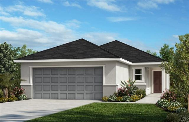 11219 Gold Compass Street, Gibsonton, FL 33534 (MLS #E2400885) :: Premium Properties Real Estate Services