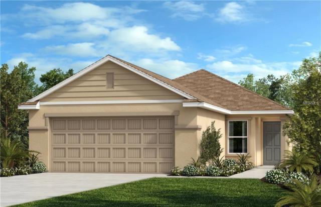 11214 Cardinal Pointe Place, Gibsonton, FL 33534 (MLS #E2400887) :: Premium Properties Real Estate Services
