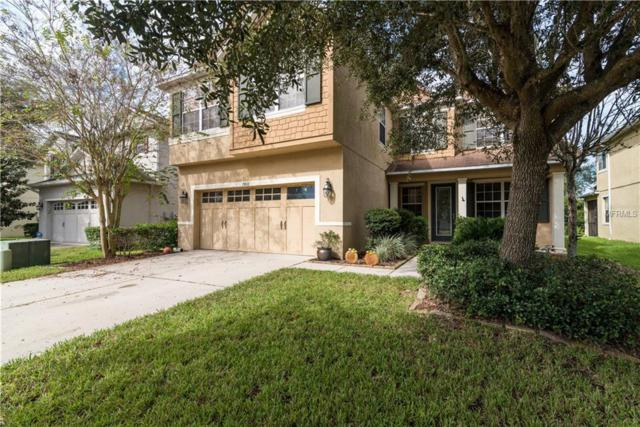 7416 Bridgeview Drive, Wesley Chapel, FL 33545 (MLS #E2400906) :: Team Bohannon Keller Williams, Tampa Properties