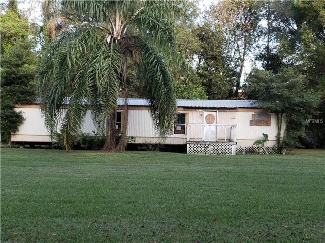 4020 Lane Road, Zephyrhills, FL 33541 (MLS #E2400915) :: Mark and Joni Coulter | Better Homes and Gardens
