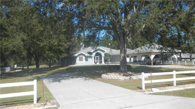 32533 Greenwood Loop, Wesley Chapel, FL 33545 (MLS #E2400916) :: Griffin Group