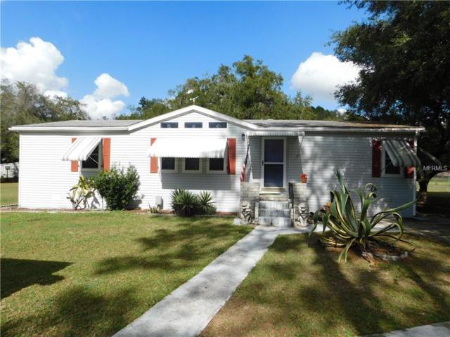 33231 Brisk Drive, Wesley Chapel, FL 33543 (MLS #E2400925) :: Griffin Group